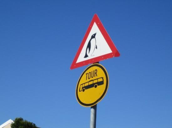 penguin-crossing-signs